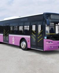 Güleryüz Otobüsleri