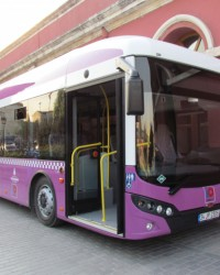 TCV, 187 Karat Otobüs