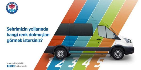Dolmuşların rengini Trabzonlular seçiyor