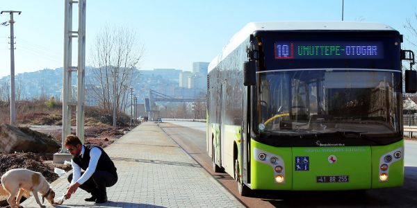 Hayvan dostu otobüsler yollarda